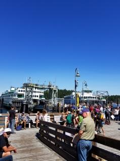 Friday harbor 2